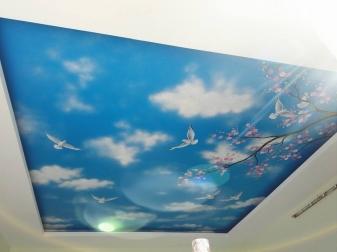 mẫu trần mây 02
