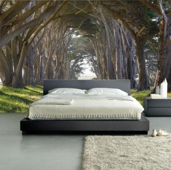 vẽ tranh tường phong cảnh phòng ngủ 03